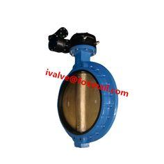single flange butterfly valve
