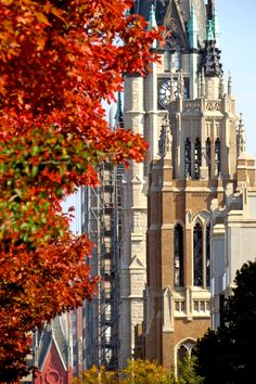 Fall on Wisconsin Avenue at Marquette University.