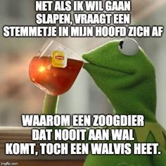 Airline Humor, Dutch Quotes, Kermit The Frog, Sarcasm Humor, Funny Quotes, Jokes, Lol, Sayings, Animals
