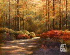 Autumn Trail Art Print by T. C. Chiu at Art.com