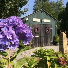 A collection of vintage cottages nestled on the Connecticut coast available for nightly or weekly stays spring, summer and fall. Beech Tree, Outdoor Venues, Connecticut, Cottages, Wedding Events, This Is Us, Bbq, Shed, Coast