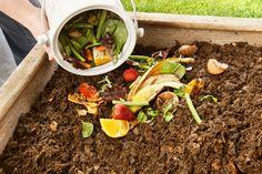 Op De Hippe Vegetarier vertelt gastblogger Chantal stap voor stap hoe je je eigen groentetuin in de stad kunt aanleggen. Lees hier alles over compost maken!