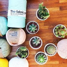 Yarn + cactus = my life is complete