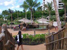 Explore coconut wireless' photos on Flickr. coconut wireless has uploaded 15880 photos to Flickr. Gazebo, Coconut, Outdoor Structures, Explore, Disney, Photos, Kiosk, Pictures, Pavilion