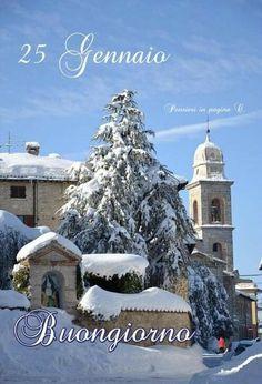 Christmas Tree, Holiday Decor, Calendar, Teal Christmas Tree, Xmas Trees, Christmas Trees, Xmas Tree