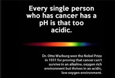 """Disease and cancer all stems from a body that it simply too acidic. Cancer CAN be reversed.  """"Cancer cannot live in an alkaline enviroment."""" -Dr. Otto Warburg, scientist and winner of the Nobel Peace Prize.   www.ijustfeelbetter.com www.ijustfeelbettertoo.com"""