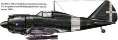 Reggiane Re.2002 - Regia Areonautica