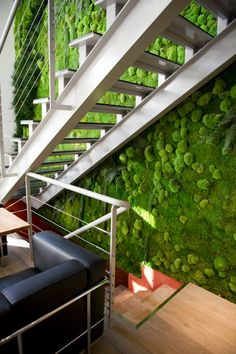 Flowerbox Wall Gardens: Moss Wall Art, Preserved Plants for indoors Interior Staircase, Interior Architecture, Island Moos, Vertical Green Wall, Green Facade, 3d Panels, Moss Wall, Deco Floral, Design Floral