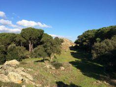 """@Giovanni Sedda """"#Correre in #Sardegna e imbattersi in un nuraghe in mezzo ai pini, un vecchio amico sulla collina :) #scattidicorsa"""""""