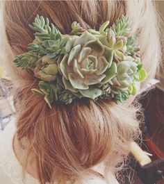 Succulent hair piece with a messy low bun for your wedding! Corsage Wedding, Wedding Bouquets, Wedding Flowers, Succulent Bouquet, Bridal Hair Pins, Wedding Hair Pieces, Floral Hair, Succulents Diy, Wedding Hair Accessories