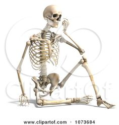 Skeleton Side View Sitting | 3d Human Male Skeleton Sitting And Thinking Posters, Art Prints by ...
