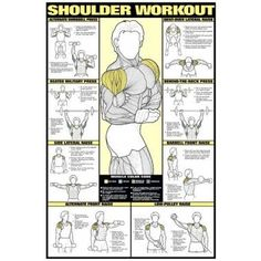 "Shoulder Workout 24"" X 36"" Laminated Fitnus Chart Series"