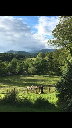 Lake District Lake District, Vineyard, Outdoor, Outdoors, Vine Yard, Vineyard Vines, Outdoor Games, The Great Outdoors