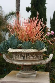 Looks like the ocean floor in an urn. I am going to try this.   Image via SheSez