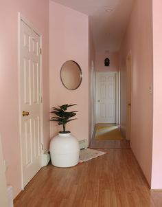 Brighten Up Your Living Room with A Warm Pink Hued Paint Color Pink Living Room Paint, Coral Living Rooms, Blush Living Room, Pink Bedroom Walls, Bold Living Room, Pink Room, Living Room Colors, Pink Walls, Coral Painted Walls