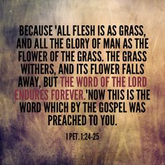 #wordofgod #word #bible #wordendures #wordforever #bibleforever