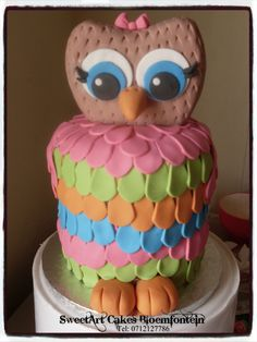 Simple Owl cake For more info & orders, email sweetartbfn@gmail.com or call 0712127786