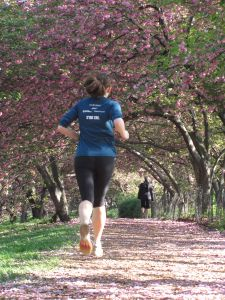 Go for a run in Central Park!