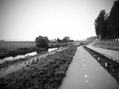 Zeeuwse polder.