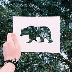 2,836 отметок «Нравится», 55 комментариев — ↞ Nikolai Tolstyh ↠ (@n_tolstyh) в Instagram: «Bear. A declaration of love to nature🌲🌲🌲 Такой вот медведь. Чем старше становлюсь, тем больше люблю…»