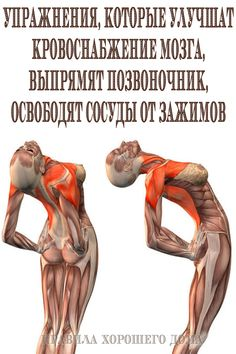 Many people are concerned about getting fit, yet they are unable to find time to create viable fitness routine. Thyroid Problems, Health Problems, Natural Home Remedies, Herbal Remedies, Health Remedies, Cold Remedies, Different Types Of Arthritis, Cooking With Turmeric, Eating Habits