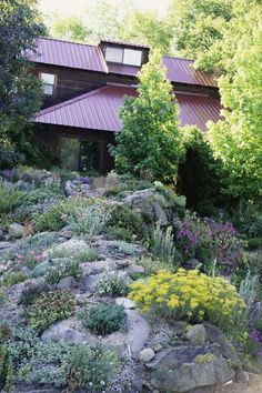 Naturally, you want your rocks to be in all different sizes. Leave holes big enough between for your plants—some tiny some bigger. Ask for advice from your local nursery as to the best place to acquire landscaping stones.