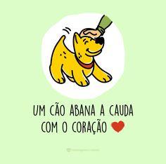 Um cão abana a cauda com o coração! #mensagenscomamor #diadocão #diadosanimais                                                                                                                                                                                 Mais