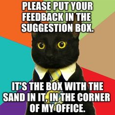 """""""Put your feedback in the suggestion box!""""   25 funny cat memes at cattime.com."""