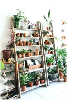 47 Cool DIY Indoor Plant Shelves To Enhance Your Room Beautiful Modern Plant Stand, Diy Plant Stand, Outdoor Plant Stands, Indoor Plant Shelves, Indoor Plants, Potted Plants, Hanging Plants, Shelves For Plants, Garden Shelves