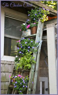 42 Best Ladder Garden Ideas For Your Backyard Garden Ladder, Garden Junk, Garden Cottage, Garden Planters, Garden Whimsy, Garden Sheds, Glass Garden, Landscaping With Rocks, Garden Landscaping