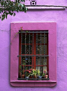 pink & violet w/red window... Barcelona