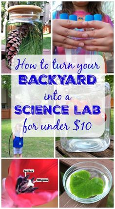 LOVE this idea!  Backyard science lab with easy science experiments for the kids to do this spring & summer!