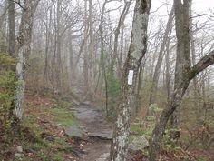 Appalachian trail | Appalachian Trail Blaze