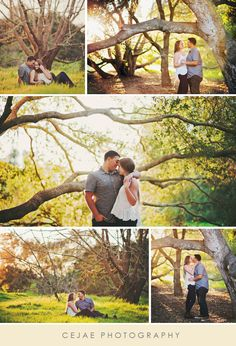 Engagement Session with gorgeous trees in Santa Barbara, California. Engagement Photos // Couple Photos // Golden Hour // Sunset // Posing Ideas // Santa Barbara // California // CeJae Photography