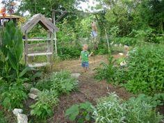 Companion Planting Beneficial Habitats