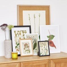 Frames in different sizes #aw16 #botanical #zarahome