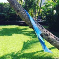 Palm Leaf Sarong  #islandbreezedry