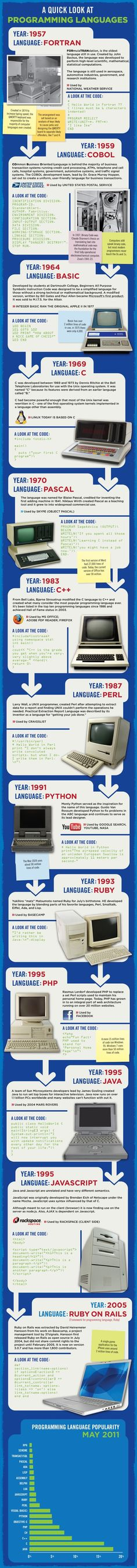 What programming language was introduced in which year – Infographics