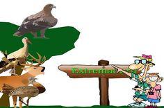 Gracias por las 100.000 visitas al blog EXTREMADURA TURISMO seguimos promocionando Extremadura http://wp.me/p3JcnA-LR