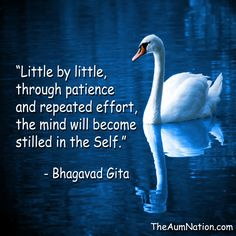 through patience and repeated effort; and by developing detachment (giving up worldly desires) one gradually gets control over the restless mind- Bhagavad Gita Hindu Quotes, Krishna Quotes, Spiritual Quotes, Spiritual Images, Yoga Quotes, Life Quotes, Hafiz Quotes, Mantra, Geeta Quotes