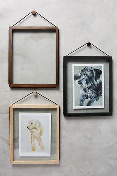 Anthropologie glass and wood frames. The clear glass around the picture is so clean and the hanging rope goes all the way around the frame. Love it.