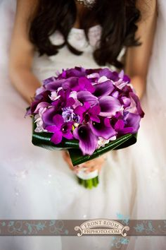 Milwaukee Domes Wedding Photography - Front Room Photographers | Milwaukee Wedding Photography - Front Room Photography-purple-bridal bouquet - violet flowers