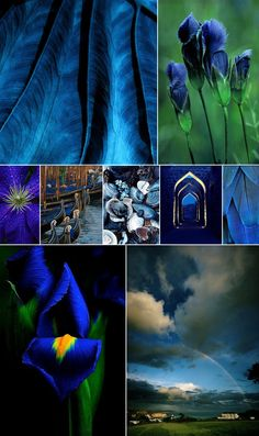 Deep Blue Inspiration for Your Home