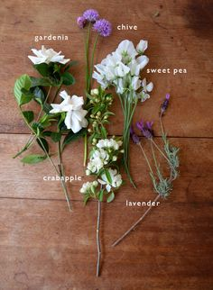 gardenia, chive, sweet pea, crabapple, lavender - beautiful bouquet deconstructed