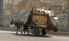 Zabaleen rubbish collectors in Cairo. Photograph: Dave Stamboulis/Alamy