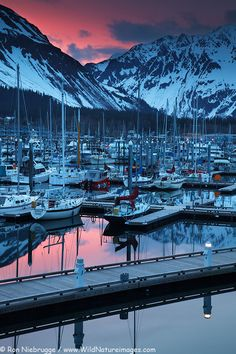 Seward Alaska Boat Harbor - looks like it was taken from right outside our hotel window except in summer you would be able to see the Cruise ships on the back side of the harbor