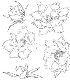 Peony Flower Tattoos by ~Metacharis on deviantART