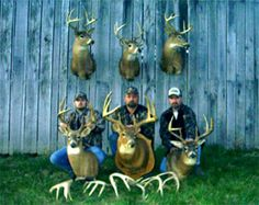 Triple T Ohio Whitetail Deer Hunting and Turkey Hunting