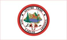 AMERICAN INDIAN TRIBAL FLAGS - Apache