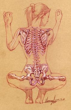 Squatting female back skeletal anatomy drawing, 2015. #xray